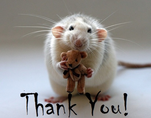 MouseyThank you