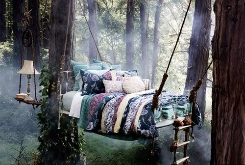 sleep in the forest